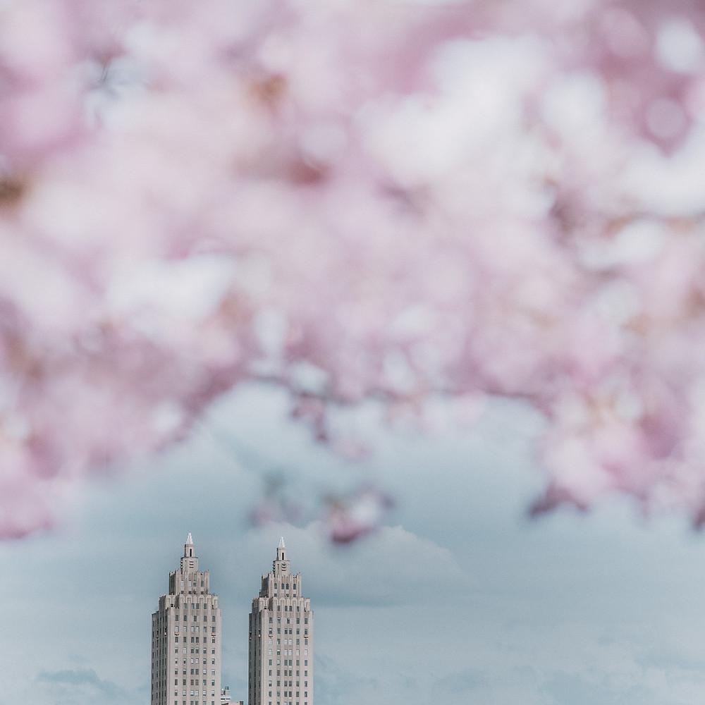 Lente in Central Park (c) Silvie Bonne