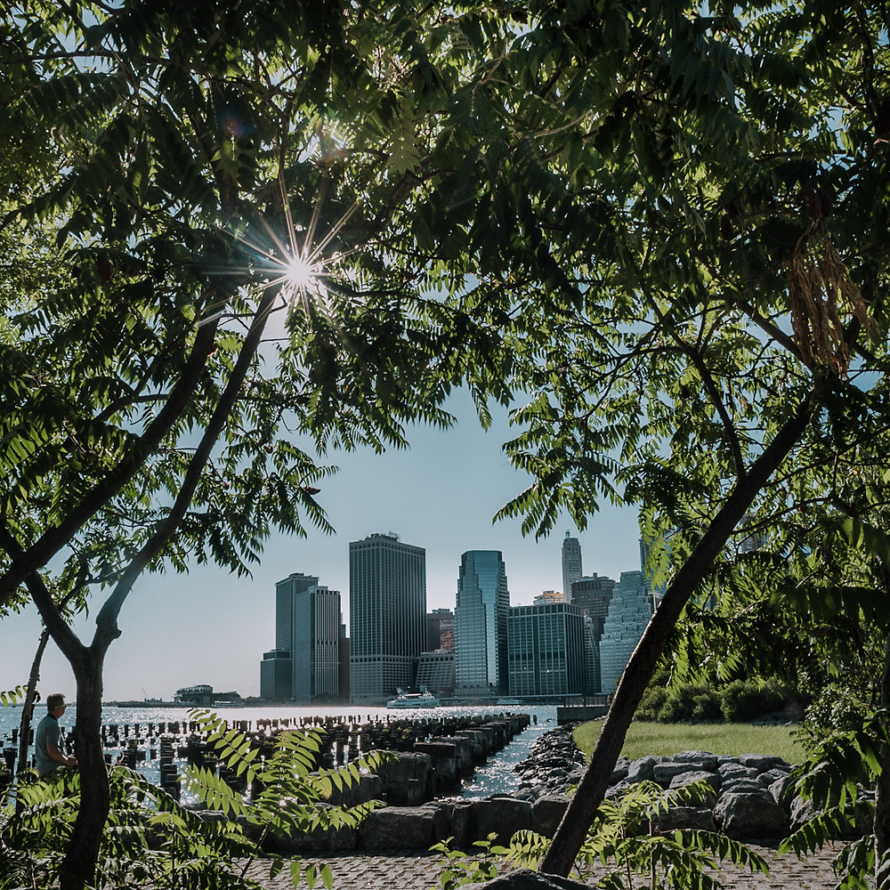 Hot in The City - Brooklyn Bridge Park  (c) Silvie Bonne