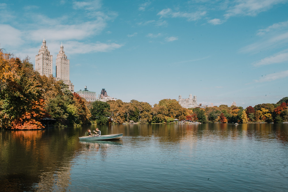 Fall in Central Park (c) Silvie Bonne