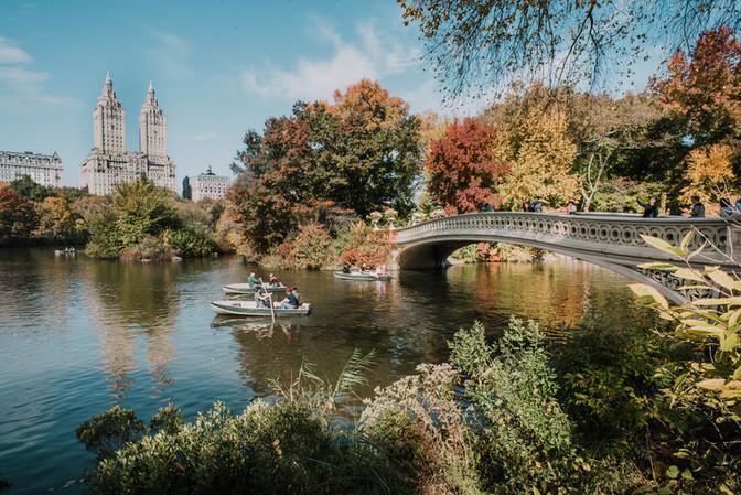 Herfst in Central Park!