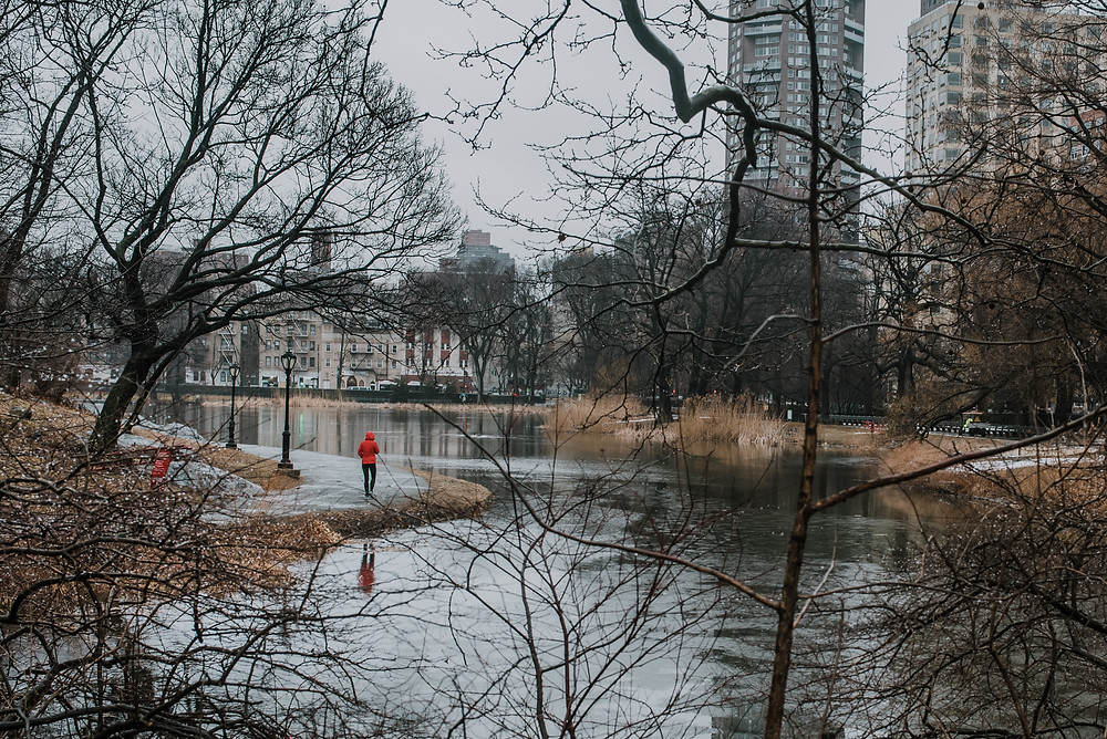 Central Park in the rain (c) Silvie Bonne