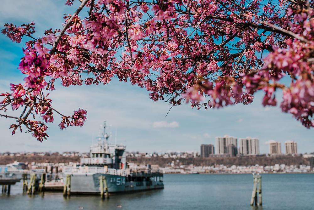 West Harlem Piers (c) Silvie Bonne