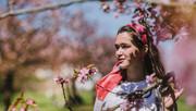 Pink blossom adventures