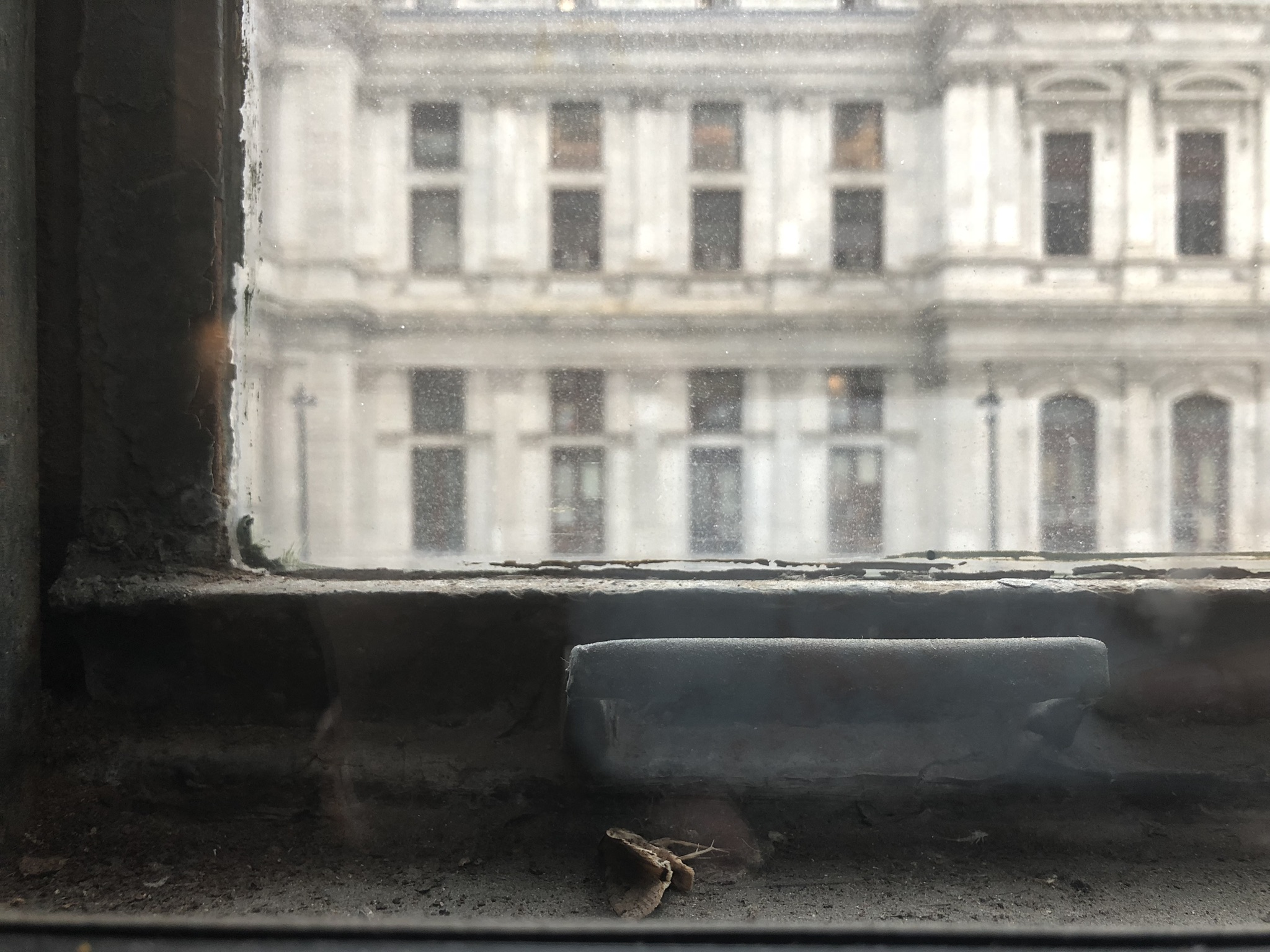 Shot on iPhone 8. Philadelphia.