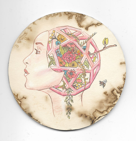 "'Platonic Solids: Mother of Flora'. 4"" diameter. Micron pen, watercolor pencil, hand stained paper. 2016."
