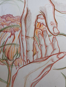 Sketchbook study. Colored pencil. 2017.