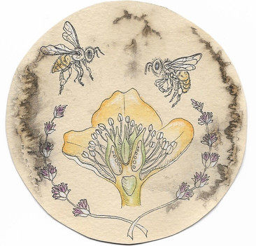 """'Team Work'. 4"""" diameter. Micron pen, watercolor pencil, hand stained paper. 2017."""
