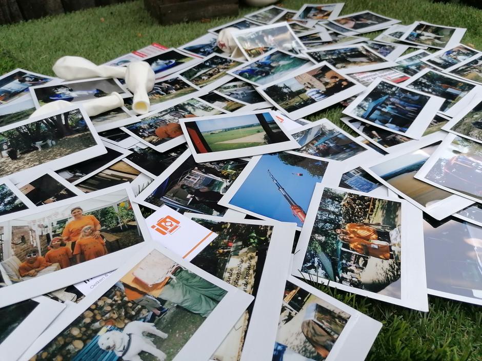 Collage Hundefest Dötlingen
