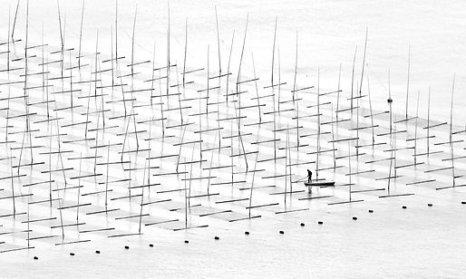 chinees bamboe.jpg