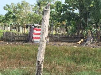 La frontera fantasma: destrucción ambiental, cambio climático y migración