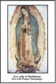 Our Lady of Guadalupe Prayer Campaign Leaflet