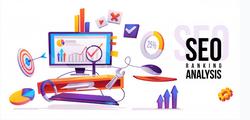 SEO for Website & Business.