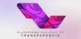 nuevo logo mini pnt.png
