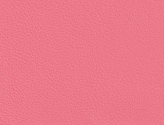 Leather Flamingo