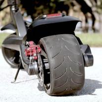 Wide Wheel Dual motors with rear disc brake