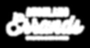 AE Logo WHITE.png