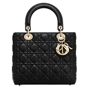 Dior_lady_S_M.png