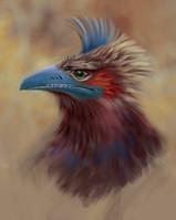 eagle_2.jpg