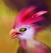 birdie 3.jpg