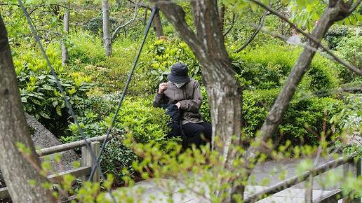 interning-at-japan-travel-150798.jpg