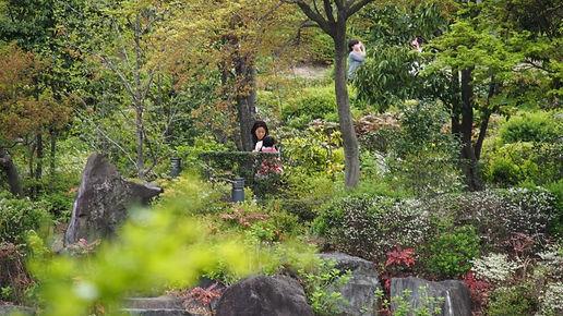 interning-at-japan-travel-150799.jpg