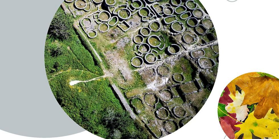 Diálogos das micro e macro paisaxes nos Camiños de Santiago por Galicia