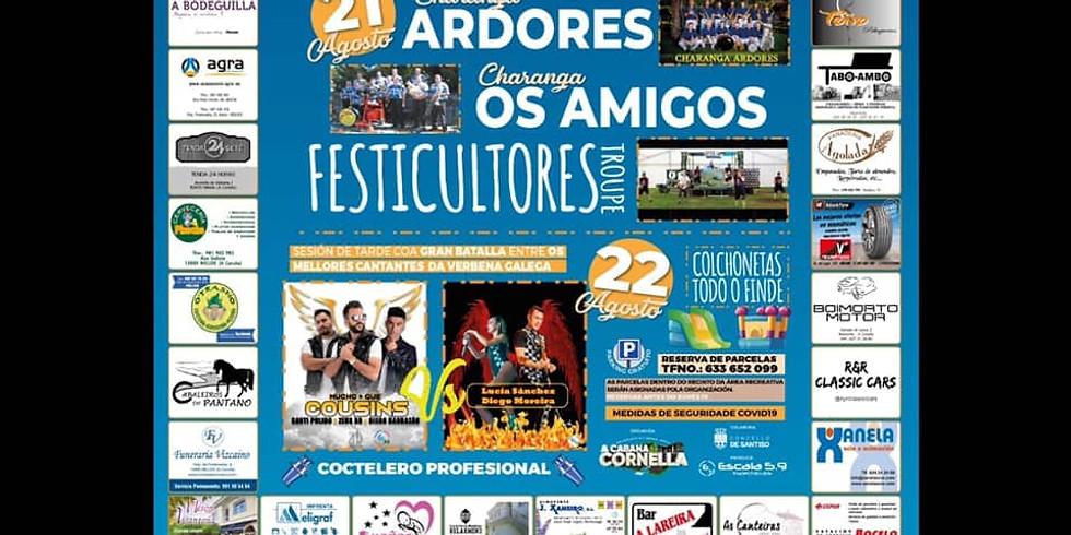 XLI Festa do Río -  Área Recreativa da Cornella (Santiso/Agolada)