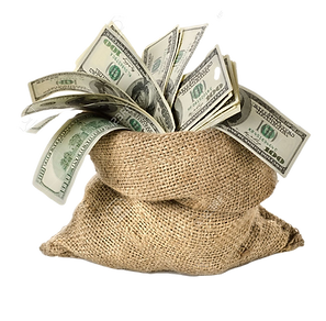 17161727-money-in-the-bag_edited.png