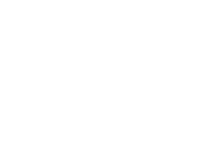 nsa-.png