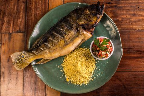 Peixes Brasileiros