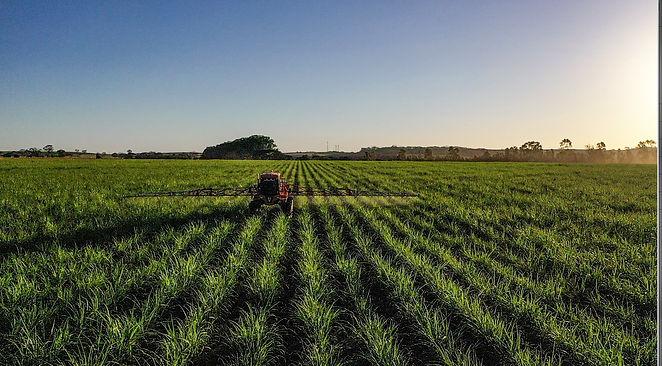 aplicacao de herbicidas.jpg