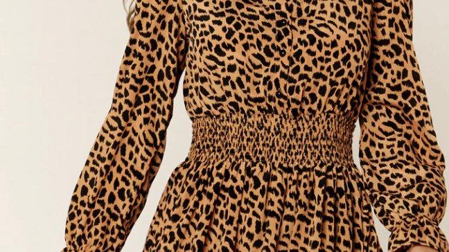 Gini London Leopard Print Long Sleeve Mini Dress