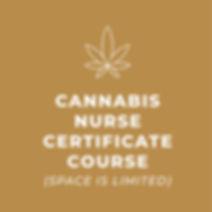Courses-02.jpg