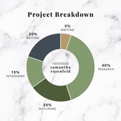 project breakdown-01.jpg