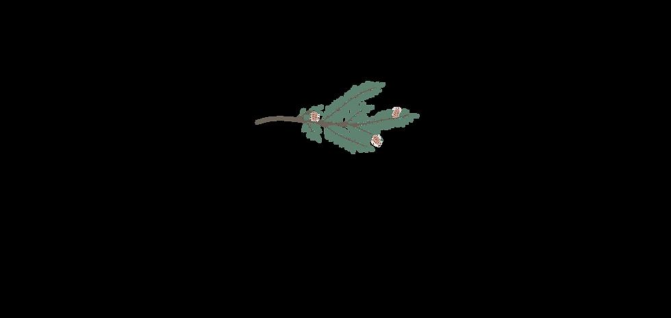 HemlockDeepDive-01.png