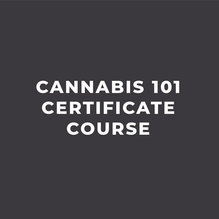 C. 101 Certificate Course