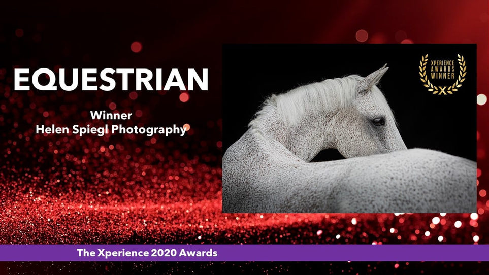 Equestrian Photographer of The Year 2020