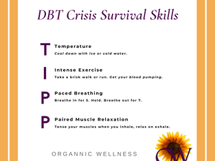 DBT Distress Tolerance Skills