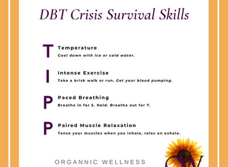 DBT Distress Tolerance Skills