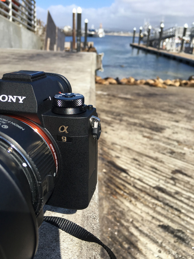 Sony a9 hands-on review