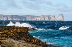 Falkland Islands Justin Hofman