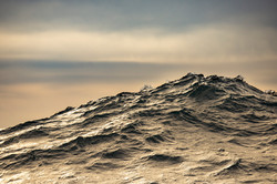 Hofman_Falklands031