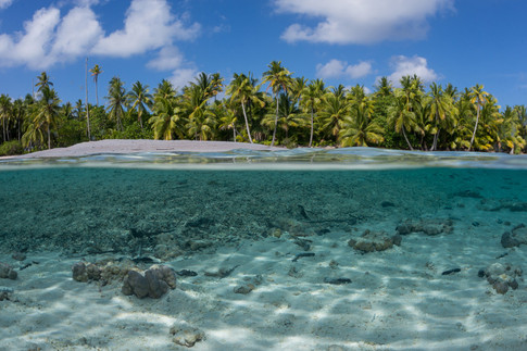 Buy this island paradise print