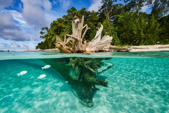 07192019_mussau island _DC24803.jpg