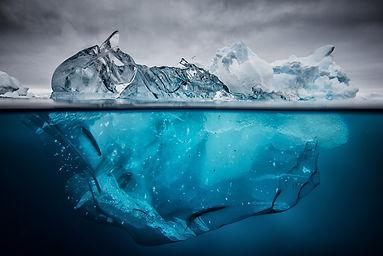 Iceberg floating Justin Hofman