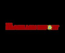 Logo The Brazilian Report.png