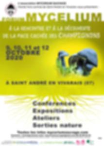 forum mycorium 2020 photo der jaune.jpg