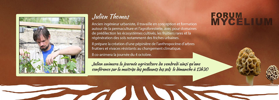 Julien Thomas.jpg