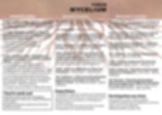 Flyer Mycelium - pour impression Printca