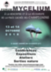 affiche forum 2 rererectifie_e A3 avec l